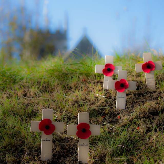 """Remembrance Sunday"" stock image"