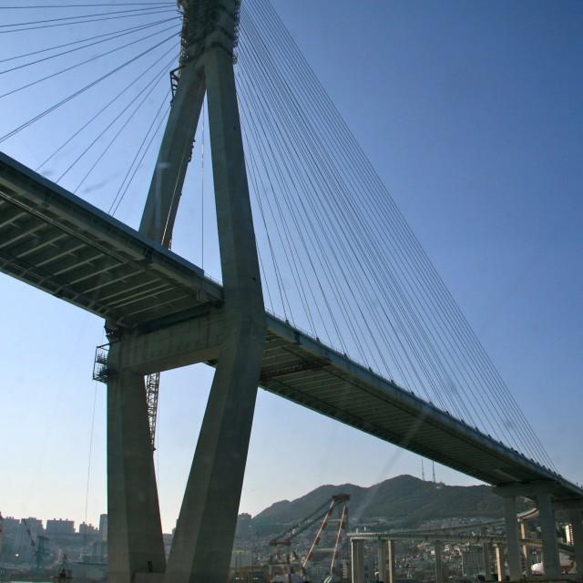 """""""Bridge in Busan"""" stock image"""