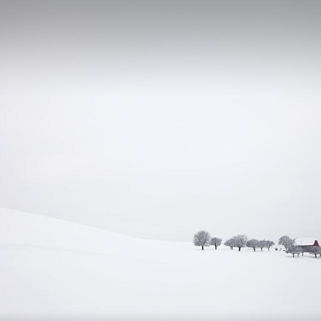 """Winter Solitude"" stock image"