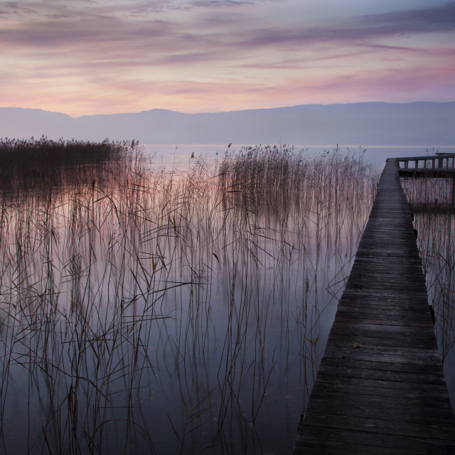 """""""A Lake a Pier and some Reeds"""" stock image"""