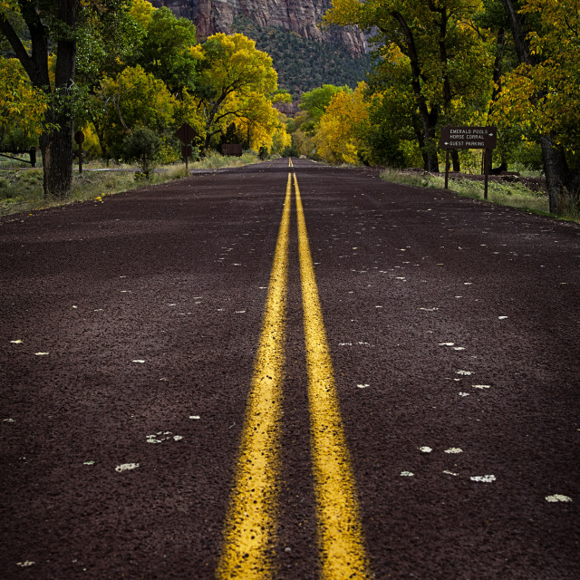 """Road to Autumn"" stock image"