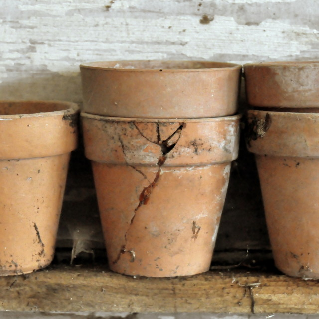 """Old Flower Pots"" stock image"