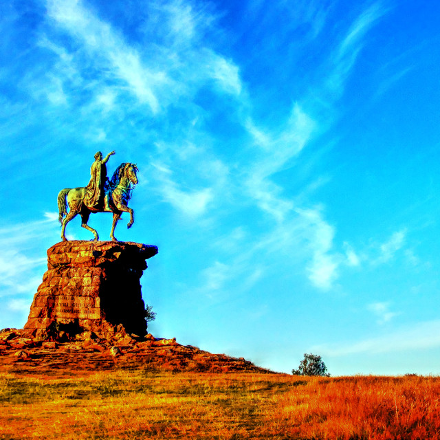 """""""The Copper Horse"""" stock image"""