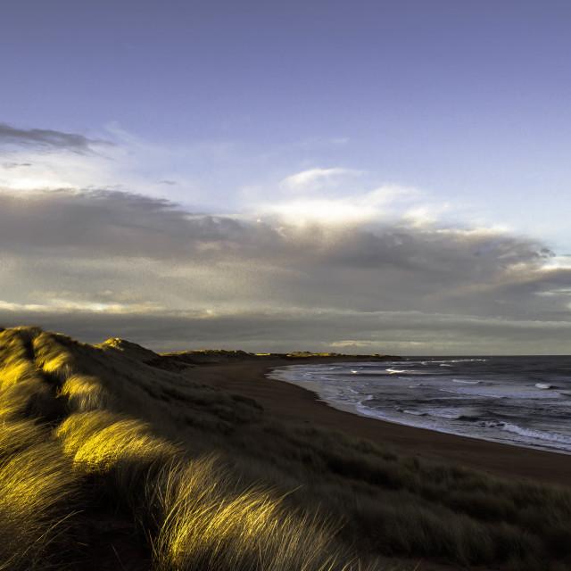 """Dune landscape in sunny breezy day"" stock image"