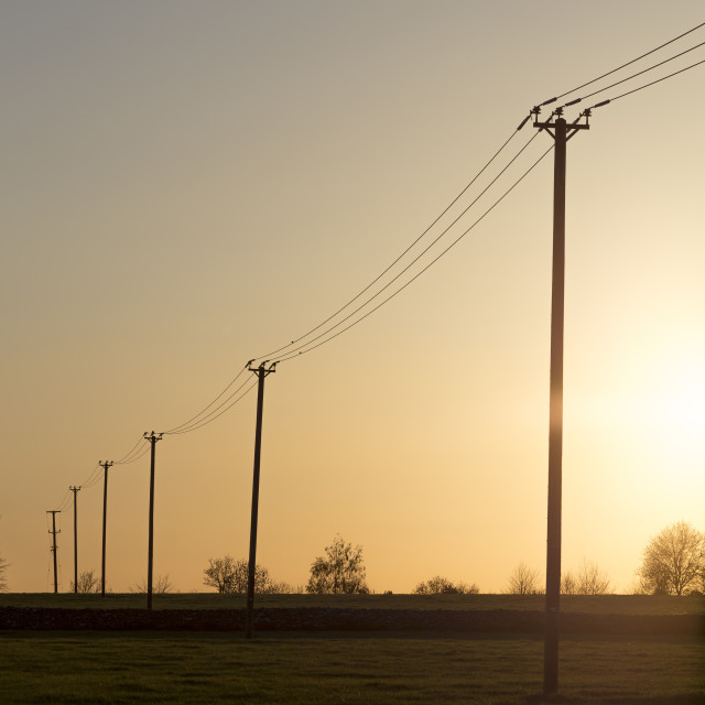 """Electricity telegraph poles in golden sunset"" stock image"