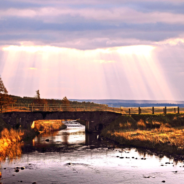 """Sunbeams over country road bridge"" stock image"