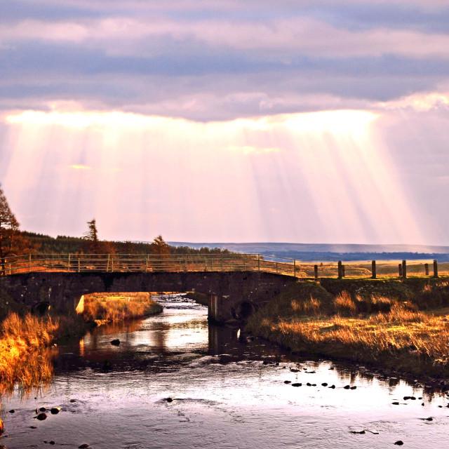 """Sunbeams over country road bridge"" stock image"