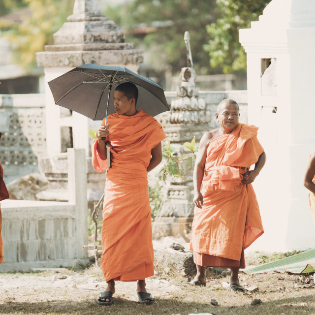 """New year monks"" stock image"