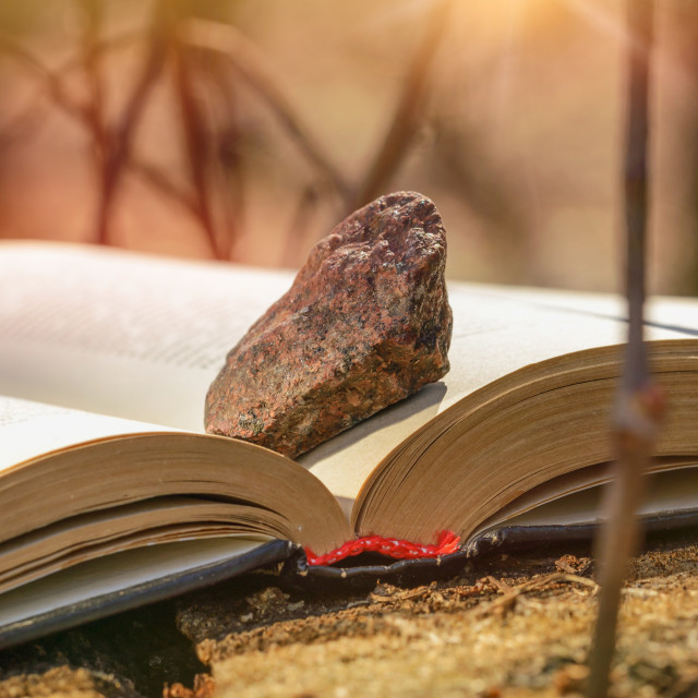 """Book with Stone"" stock image"