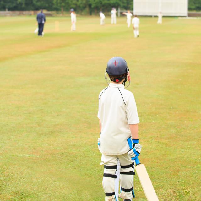 """Cricket"" stock image"