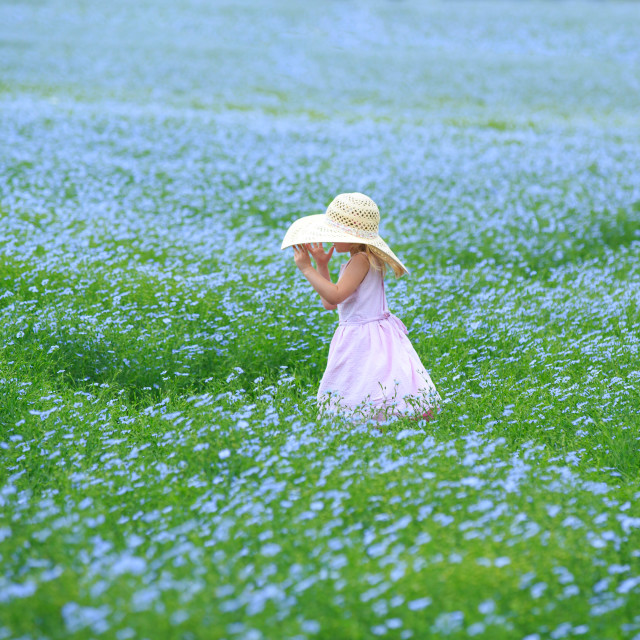 """""""Child in a flower field"""" stock image"""