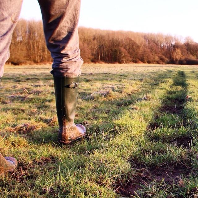 """Walking on the farm"" stock image"