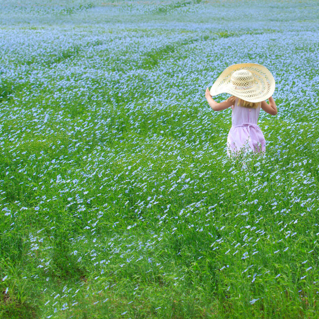 """Child in a flower field"" stock image"