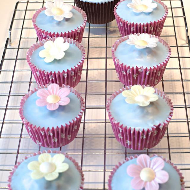 """Cupcakes"" stock image"