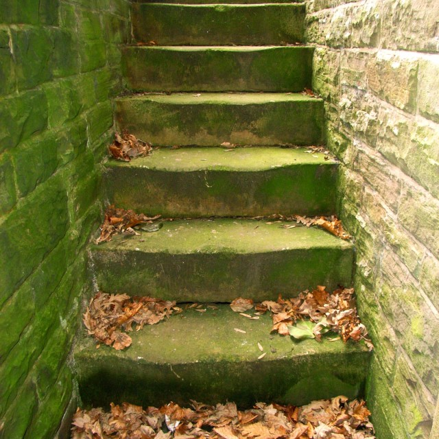 """green steps"" stock image"