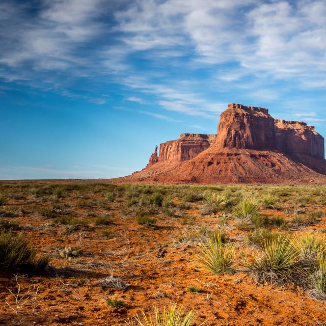 """""""Desert Monument"""" stock image"""