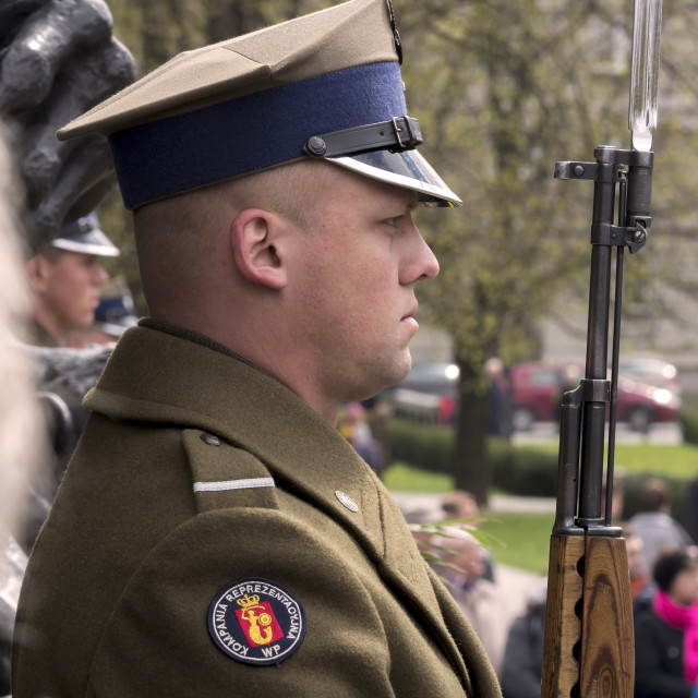 """""""Honour guard"""" stock image"""