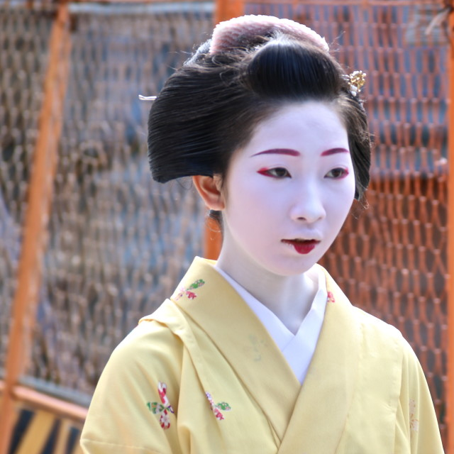 """Wandering geisha"" stock image"