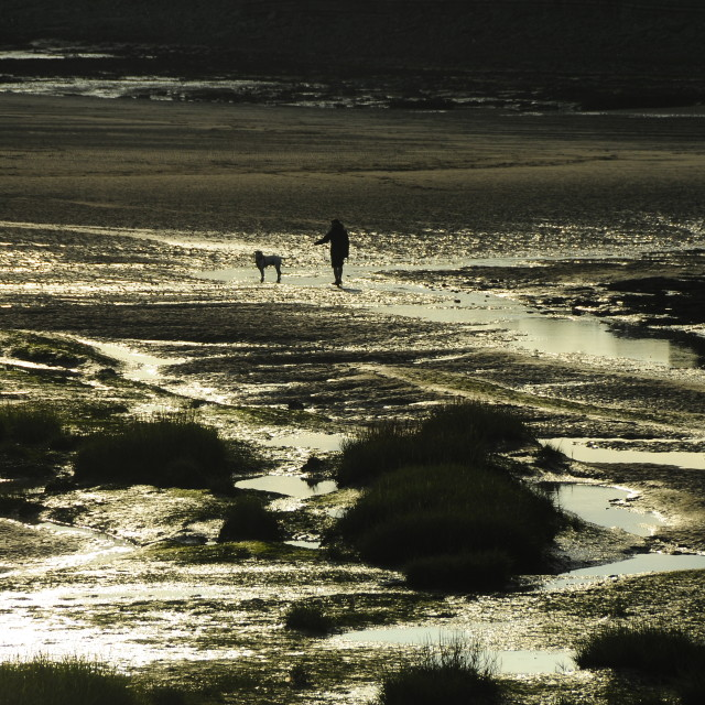 """Walking the dog at low tide"" stock image"