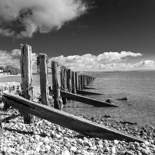 """Calm Groynes"" stock image"