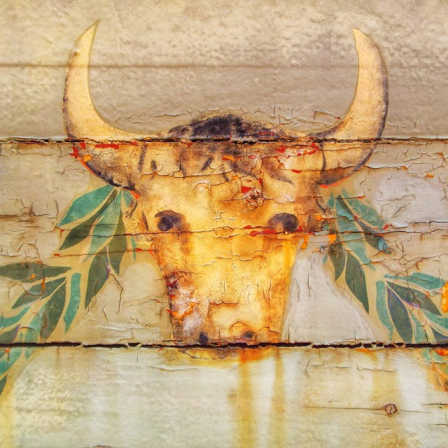 """Bulls head painting"" stock image"