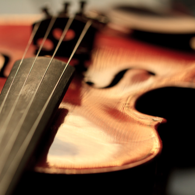 """Old Violin"" stock image"