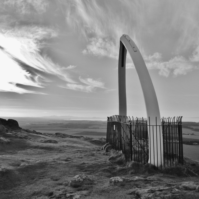 """Whalebone Monument"" stock image"
