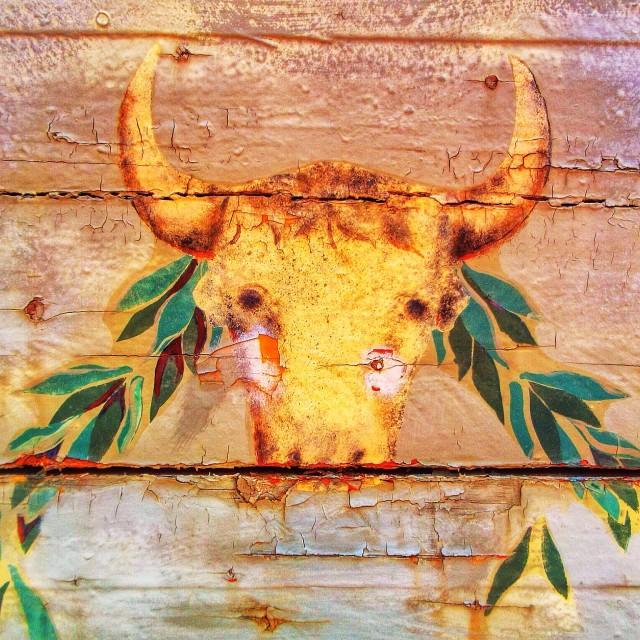 """Bulls head painting 2"" stock image"