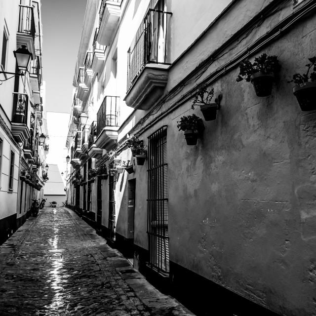 """""""Alleyway in Cadiz"""" stock image"""
