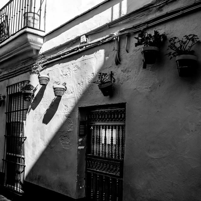 """""""Doorway, Cadiz"""" stock image"""