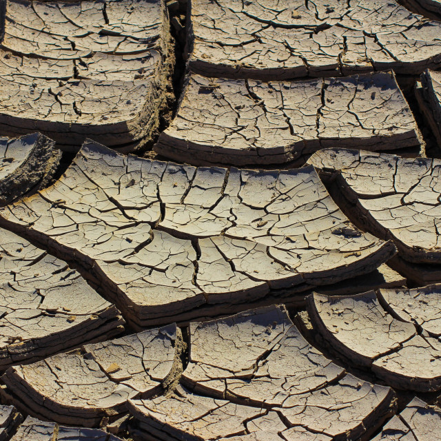 """""""cracked earth"""" stock image"""