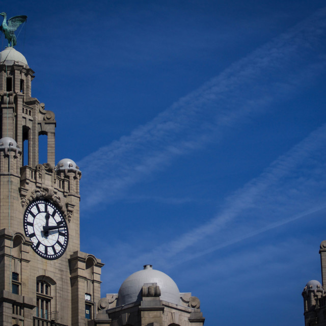 """Liver Birds"" stock image"