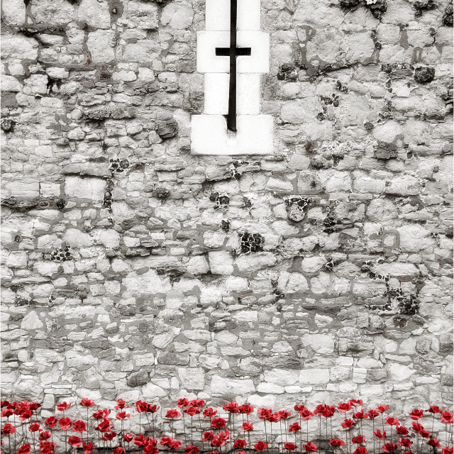 """Poppies in the Moat"" stock image"