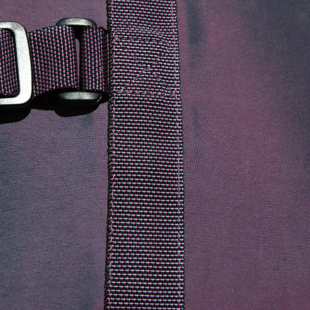 """purple buckle"" stock image"