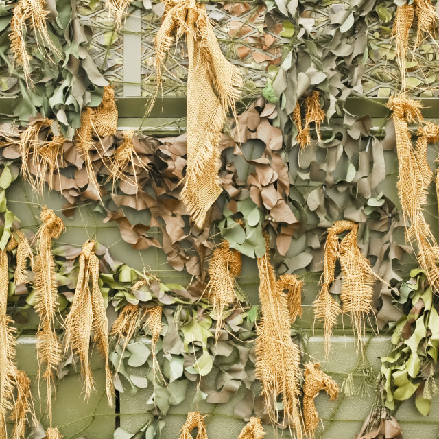 """camouflage netting"" stock image"