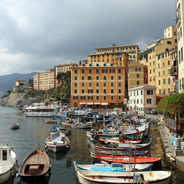 """Harbour in Camogli"" stock image"