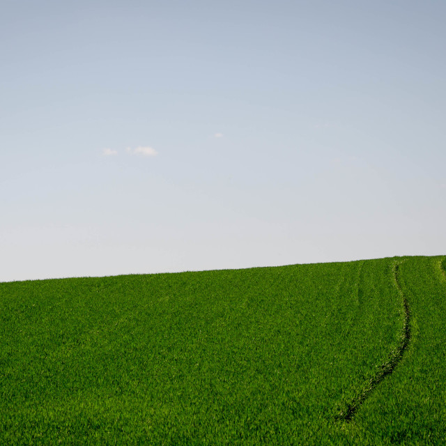 """Track on the green field"" stock image"