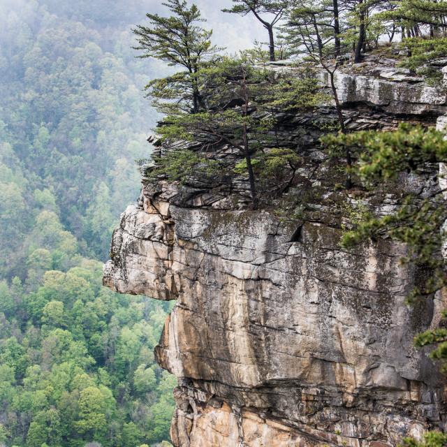 """Gorge Overlook"" stock image"