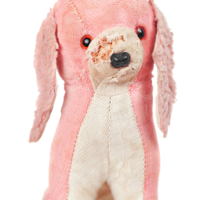"""stuffed toy dog"" stock image"