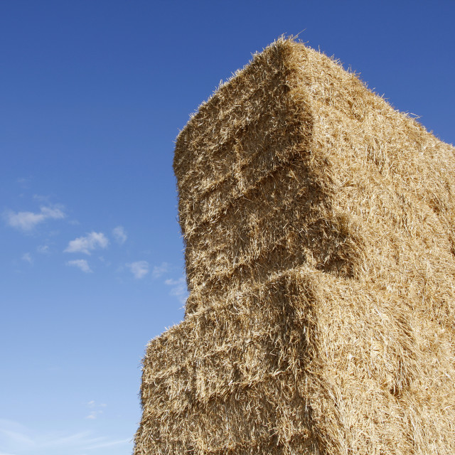 """""""Stacked hay bales"""" stock image"""