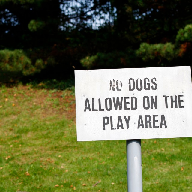 """No dogs allowed sign"" stock image"