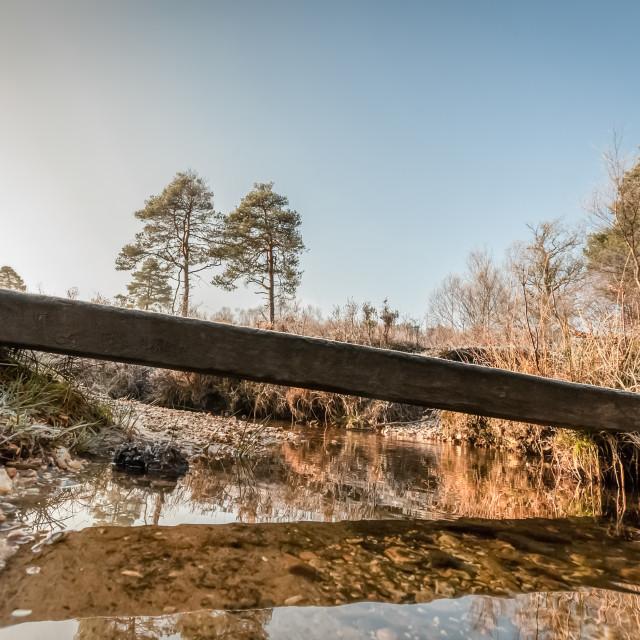 """winter creek"" stock image"