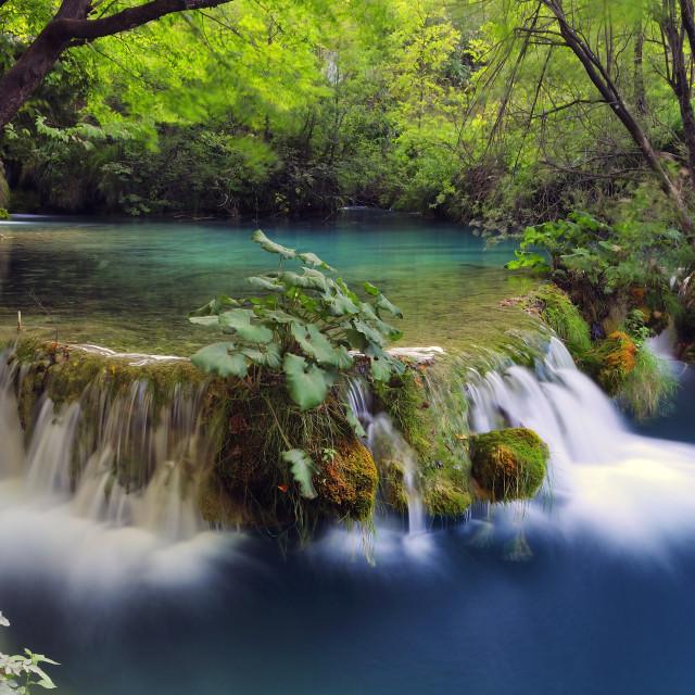"""Plitvice Lakes National Park"" stock image"