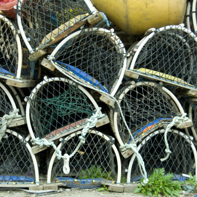 """Lobster nets"" stock image"