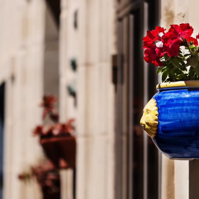 """""""Door Flowers"""" stock image"""