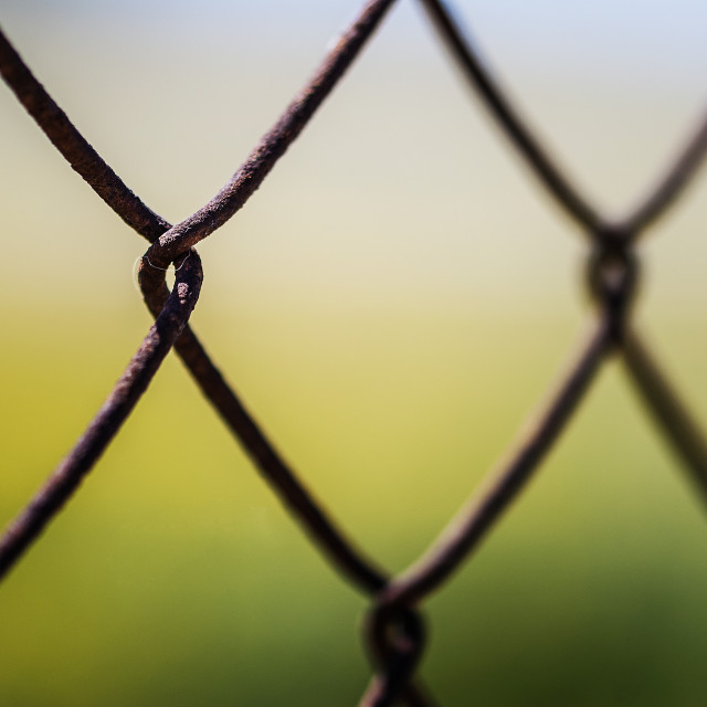 """Fenced in"" stock image"