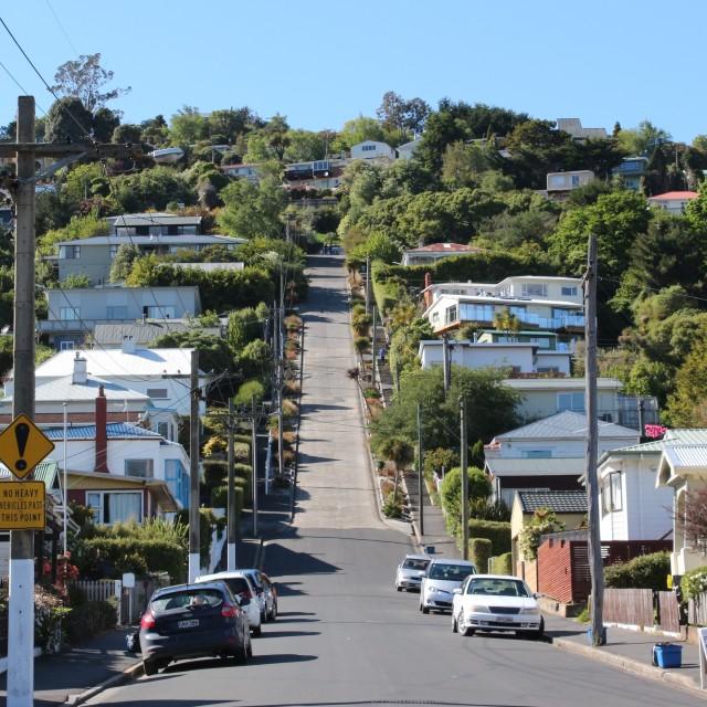 """Looking up Baldwin Street, Dunedin, New Zealand"" stock image"
