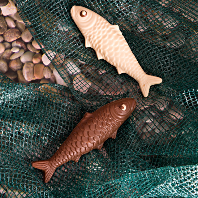 """Chocolate fish"" stock image"