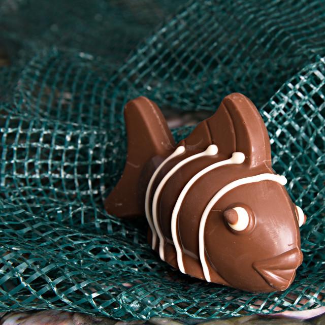"""Chocolate fish"" stock image"