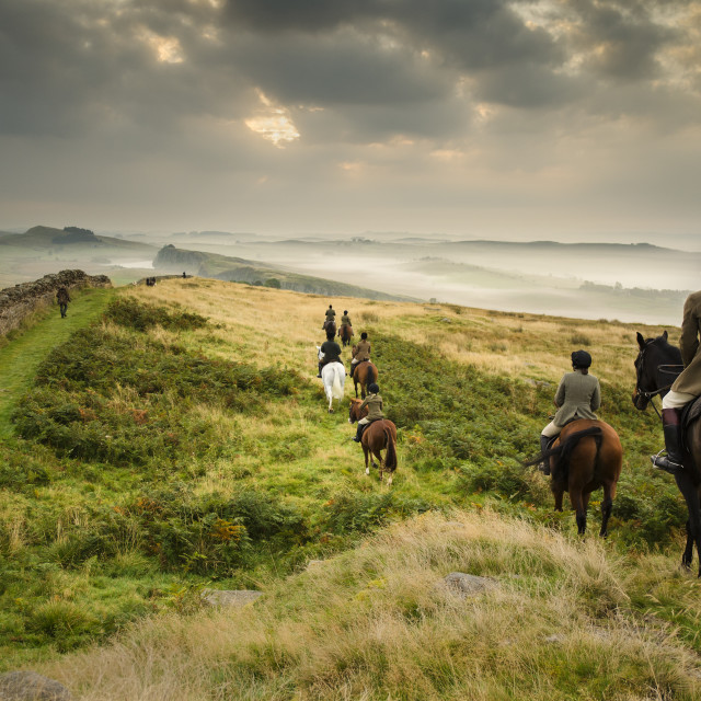 """Hunting on Winshields Crags, Northumberland"" stock image"